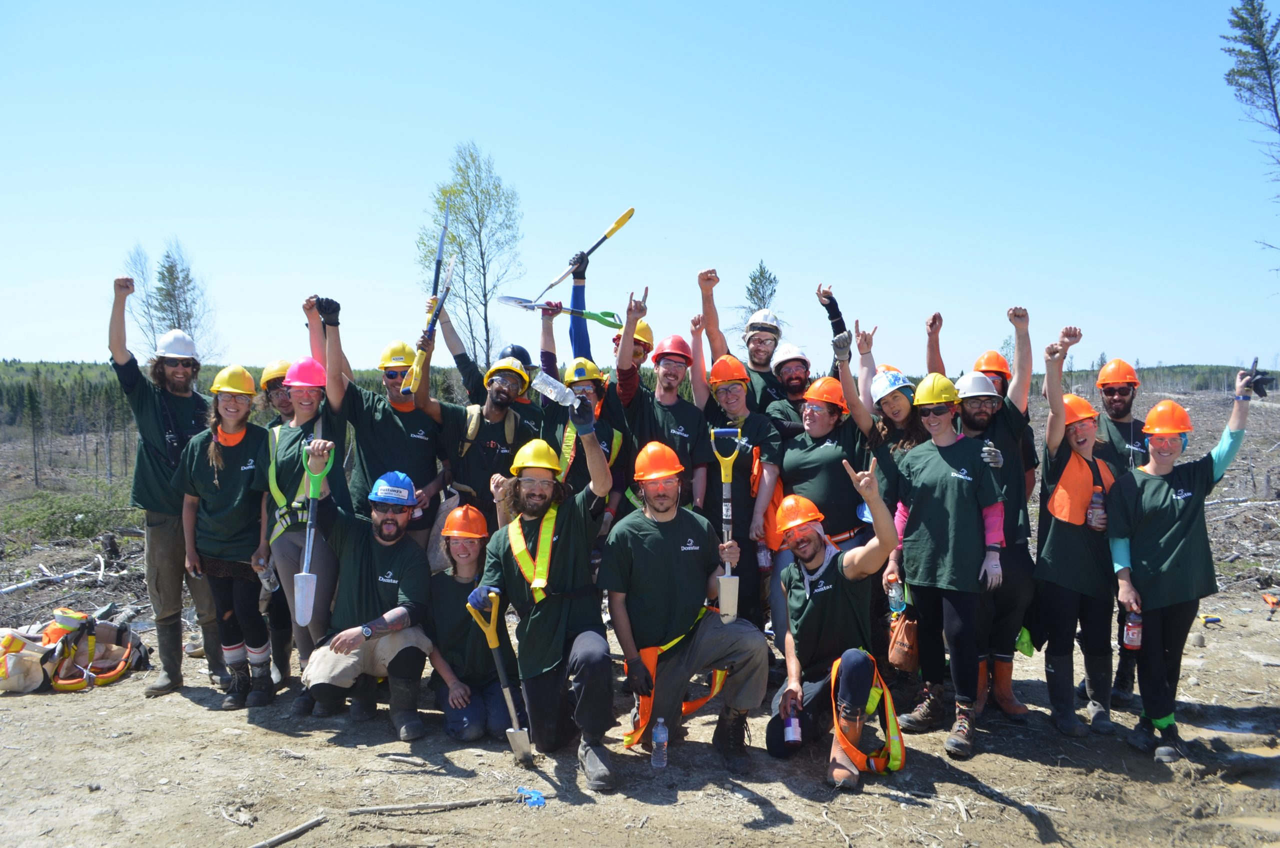 Domtar Guinness World Record for Tree Planting