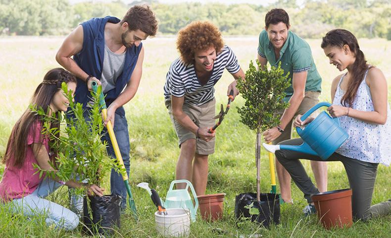 Millenials Help the Environment