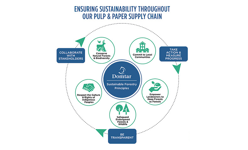 Domtar's sustainable forestry principles govern our work