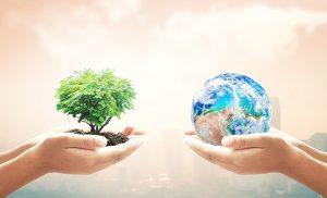 rainforest alliance partnership
