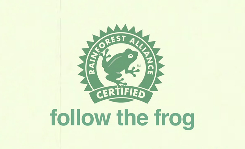 follow the frog campaign