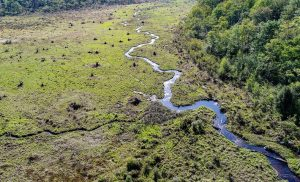 Conservation Fund preserve forestland