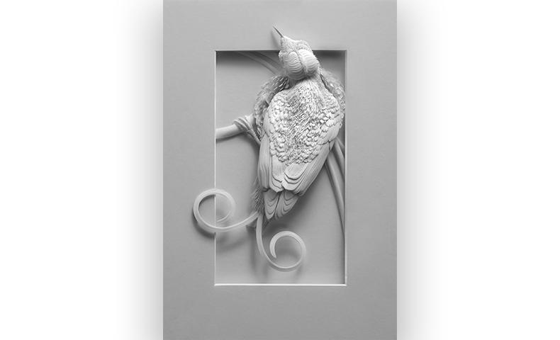 Wilson's Bird of Paradise by paper artist Calvin Nicholls
