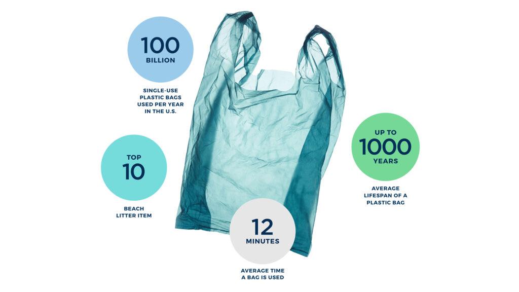 Beyond the Bag challenge infographic