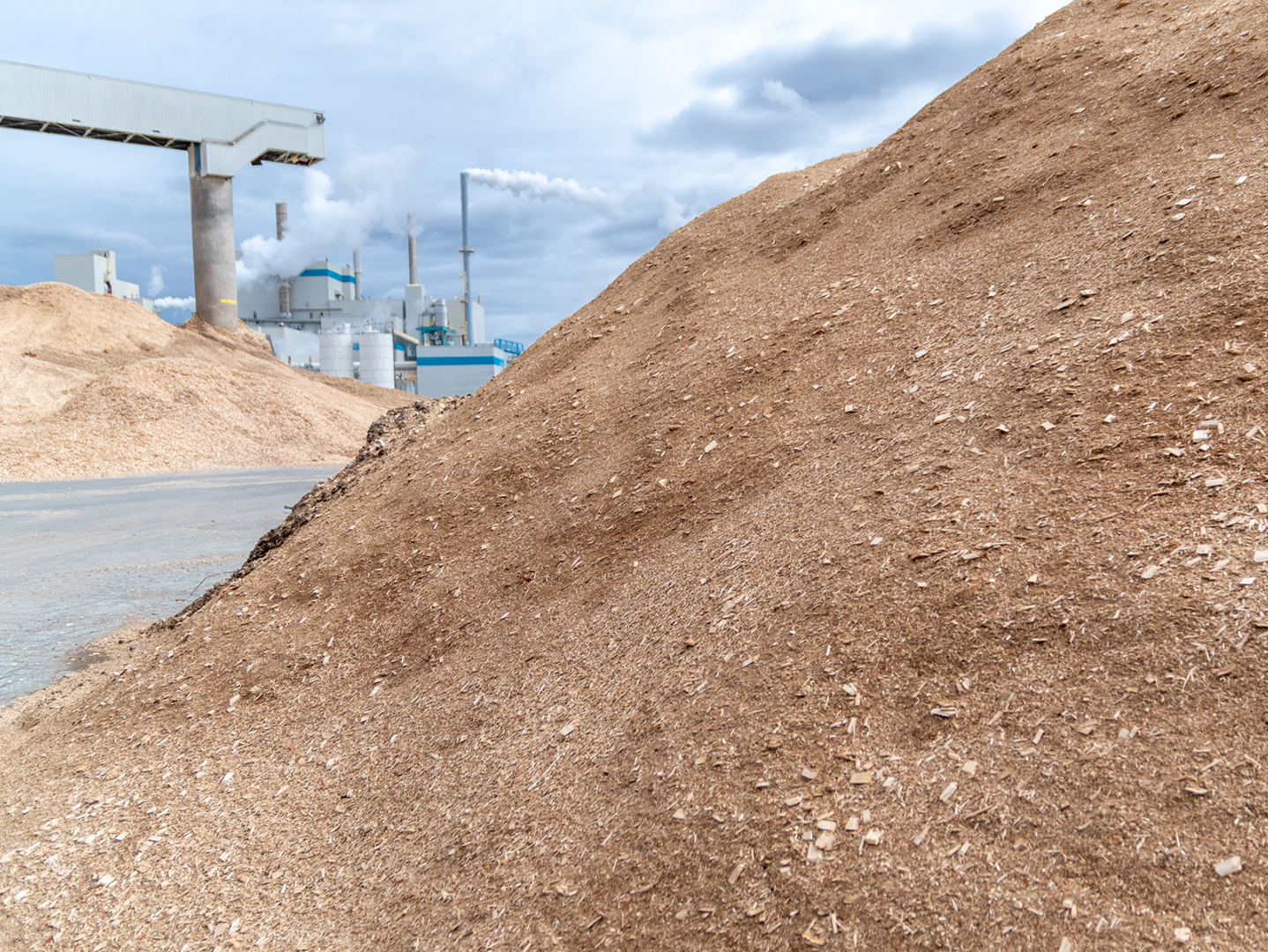 biomass is an important part of our renewable energy plan